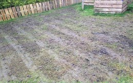 lawn stage 3